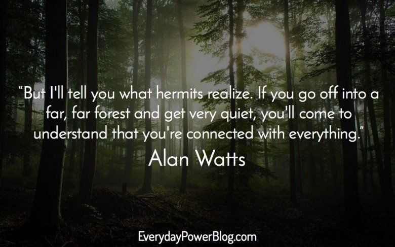alan-watts-quotes-19-e1441164261318.jpg
