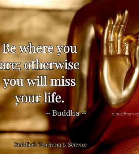 Buddha Quote On Life Inspiration Buddha Quotes About Life Death Peace And Love That Will Inspire You