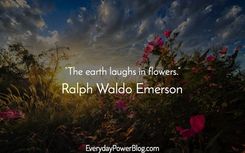 ralph waldo emerson on nature essay
