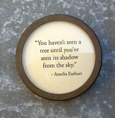 inspirational Amelia Earhart Quotes About Adventure