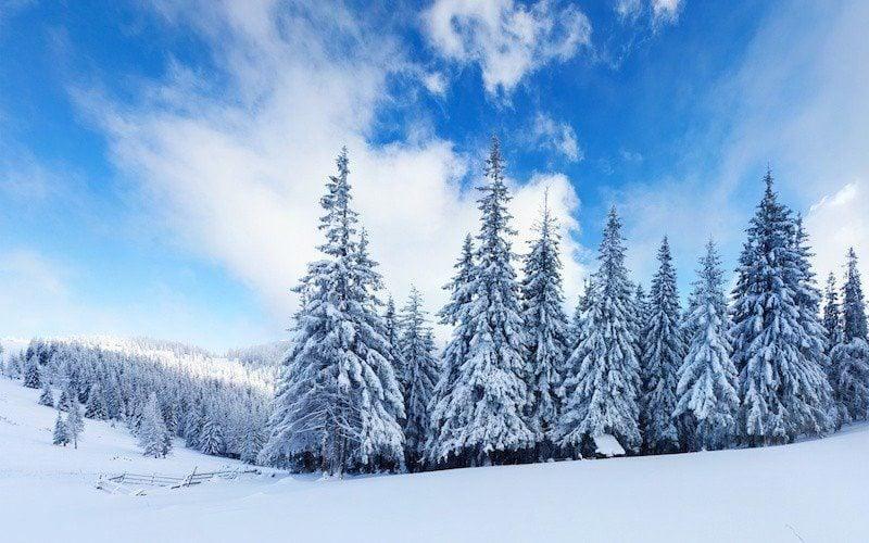 winter motivation