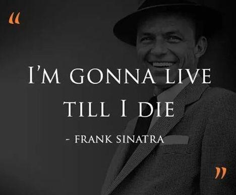 Sinatra Quotes Custom Frank Sinatra Quotes About Life Love And New York