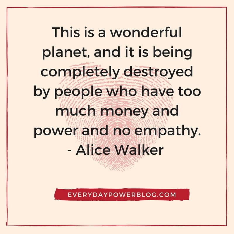 alice walker quotes about life