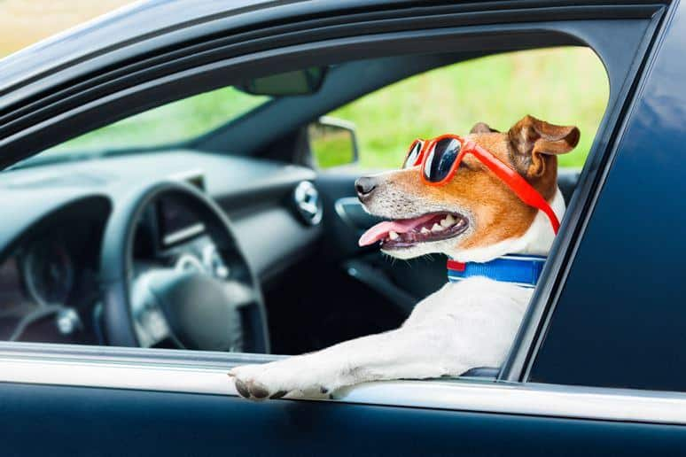 5 Ways To Change Your Mood Into A Positive One While Driving Home