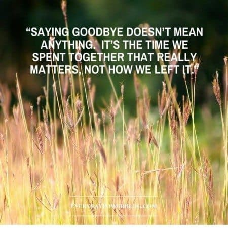 south park quotes saying goodbye