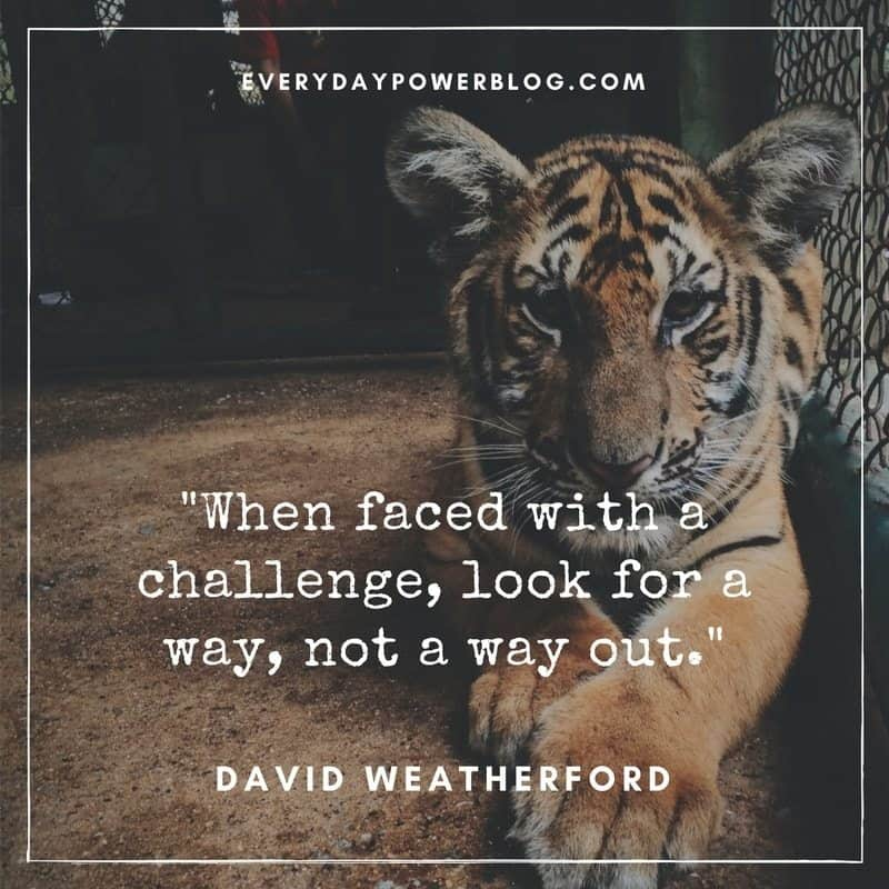 Quotes About Challenges Unique 50 Inspiring Quotes About Challenges To Help You Get Through Tough