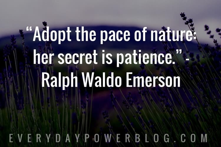 Nature Quotes about having patience