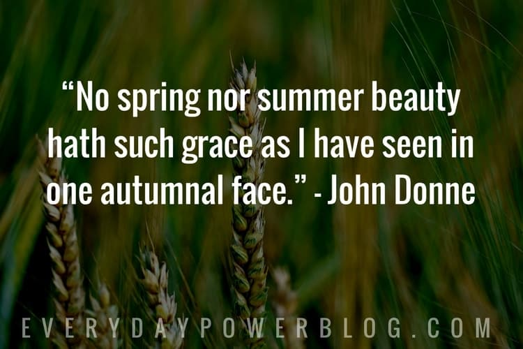 best Nature Quotes about beauty