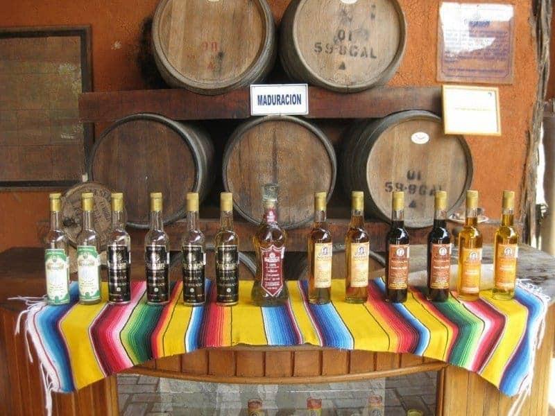 Don Crispin Tequila Visit / Puerto Vallarta, Mexico