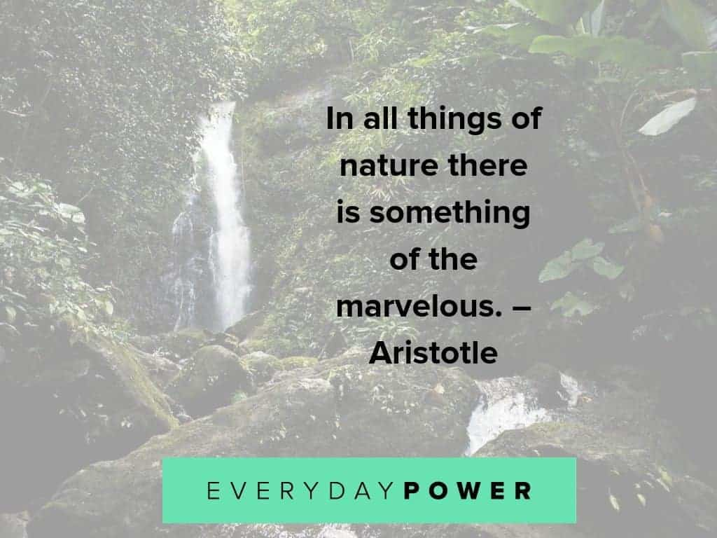 80 Nature Quotes About Mother Earths Beauty 2019