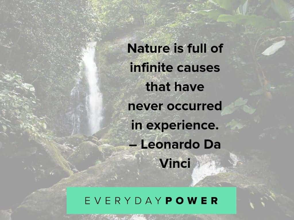 nature quotes about its infinite causes