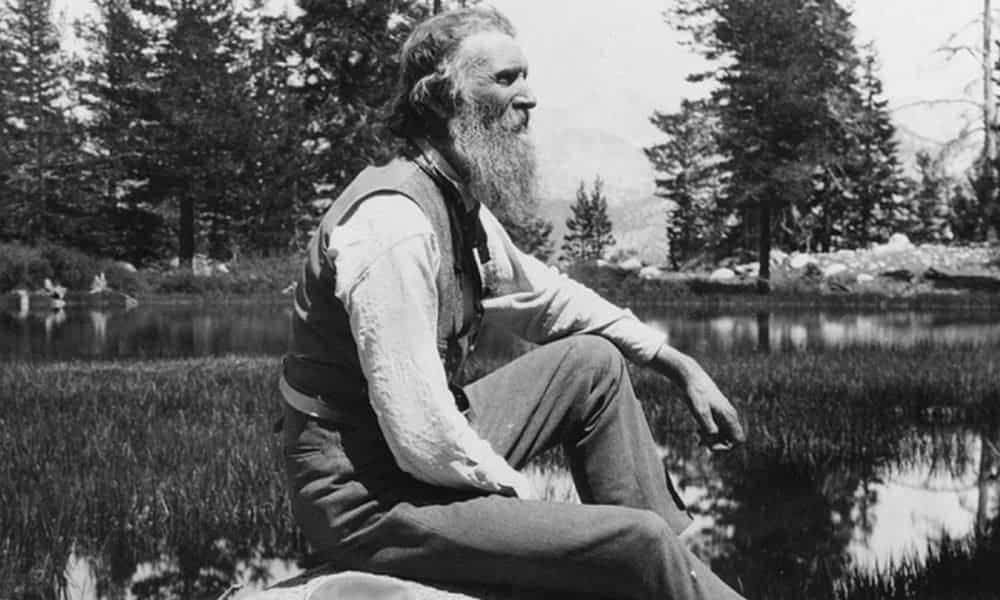 50 Best John Muir Quotes On The Mountains Of Life 2019