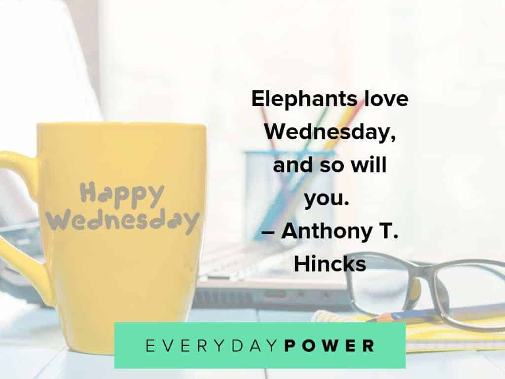 50 Wednesday Quotes To Help You Get Through Hump Day 2019