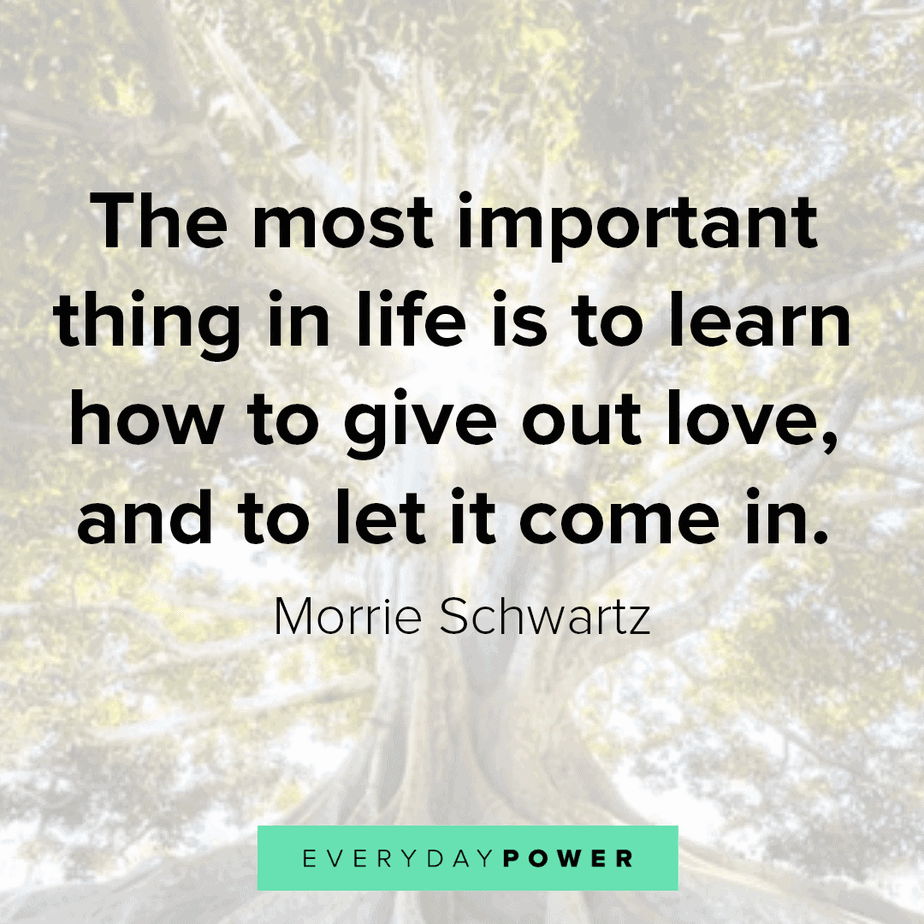 Great Quotes About Life and love
