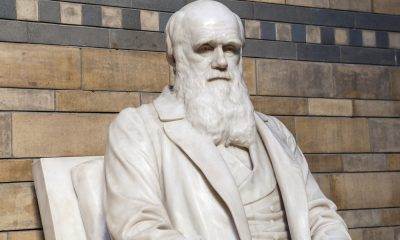 50 Charles Darwin Quotes To Build Your Foundation Of Scientific Reasoning