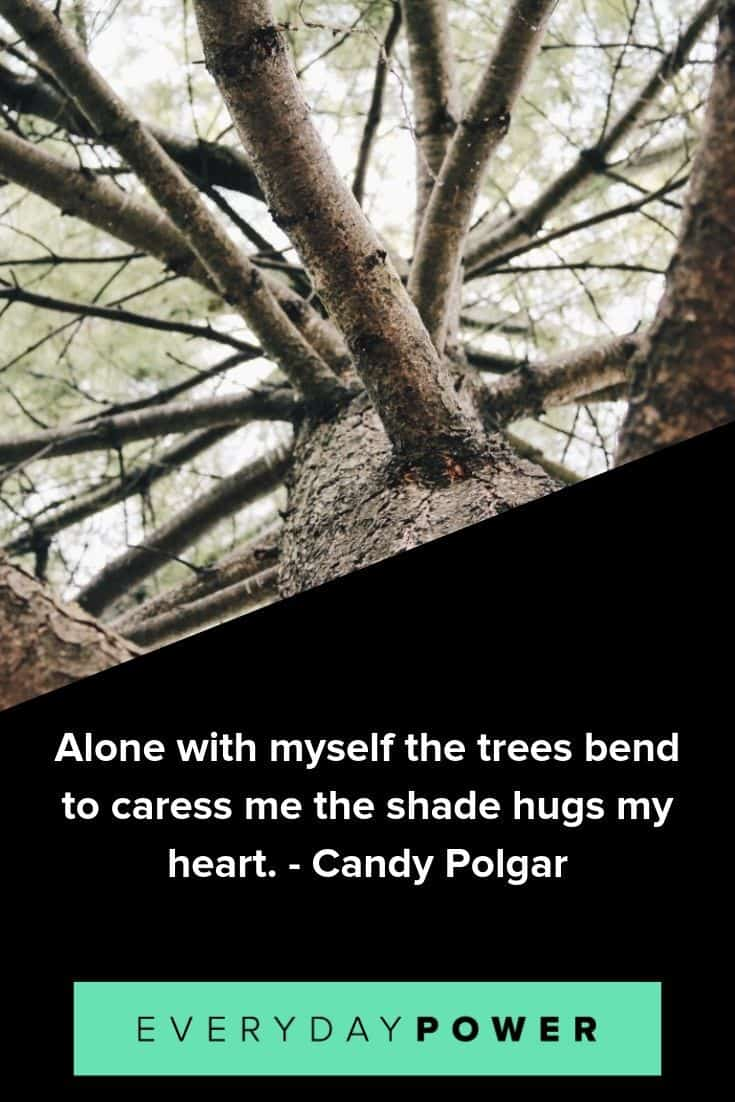 Tree Quotes To Make You Want To Plant Roots