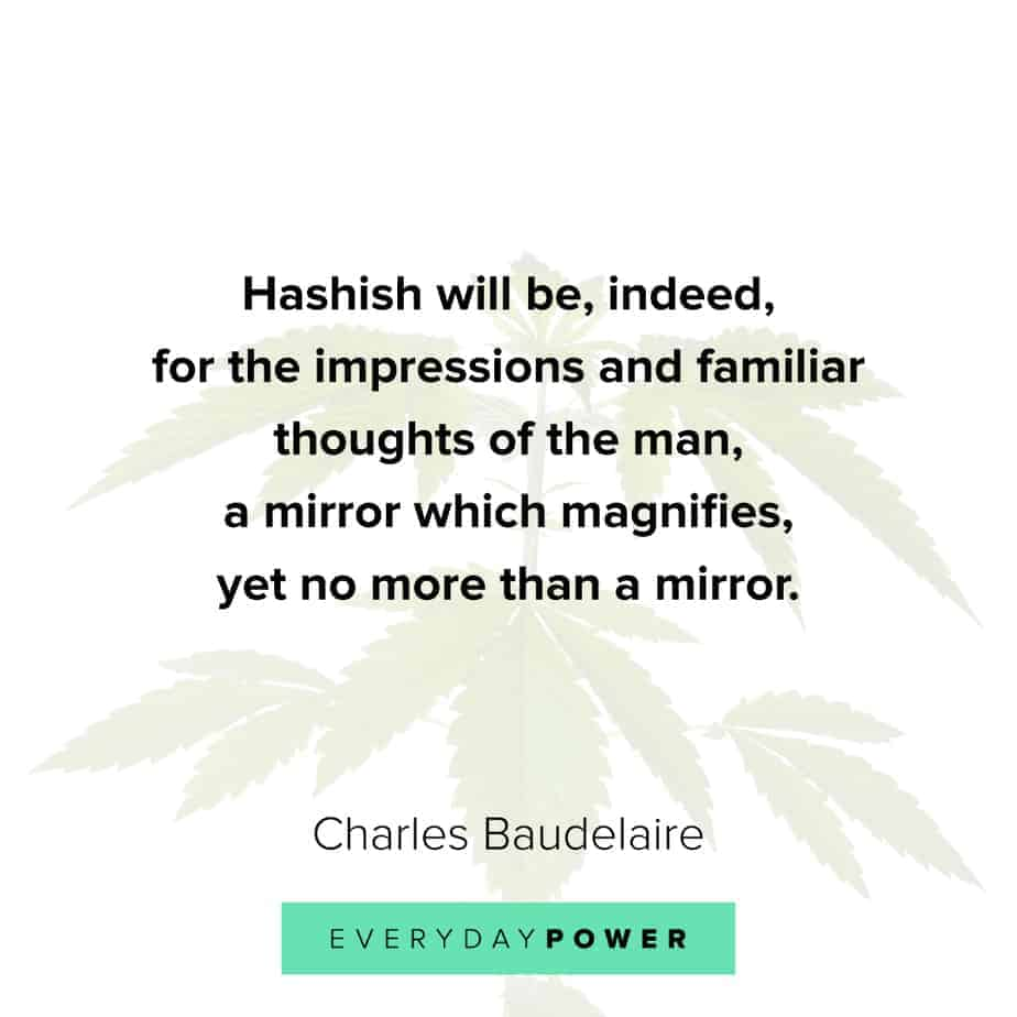 Weed Quotes about impressions