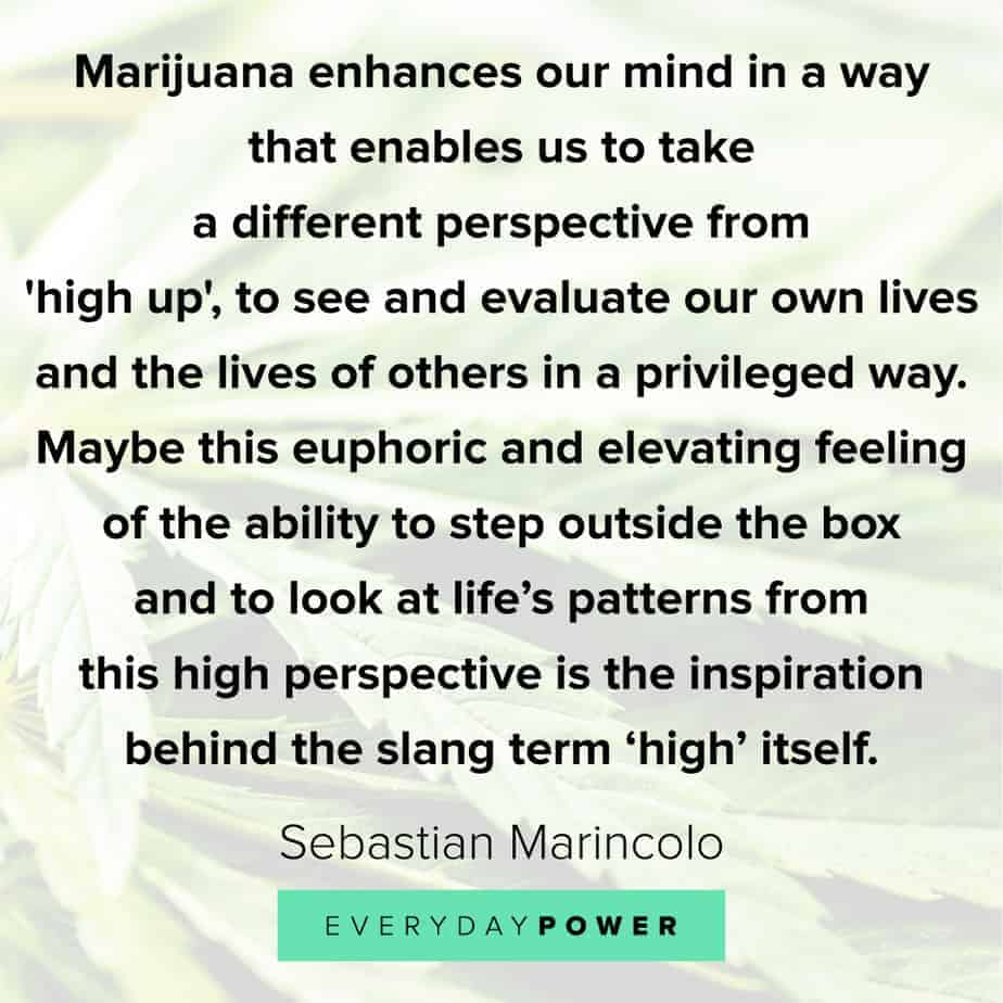Weed Quotes about perspective