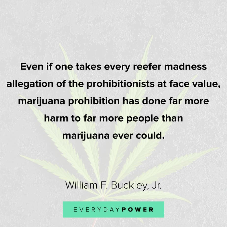 Weed Quotes about its prohibition