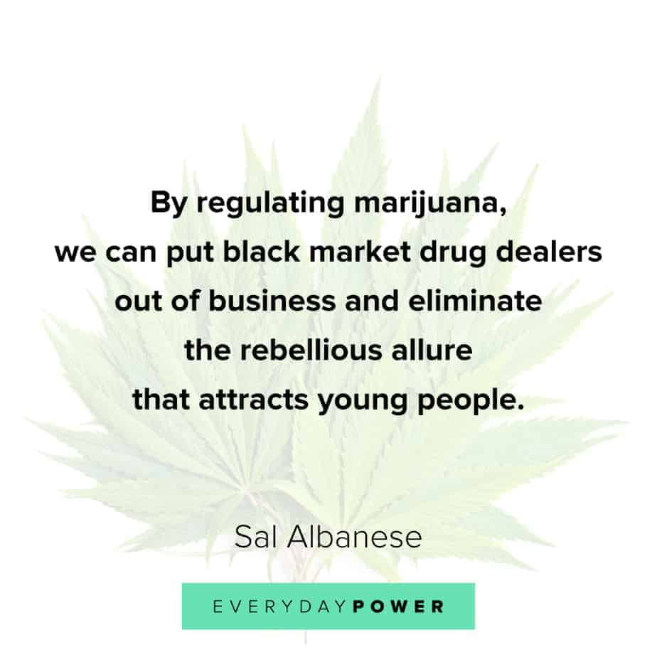Weed Quotes about young people
