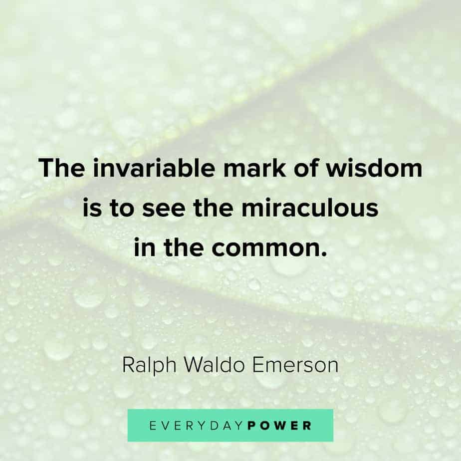 gratitude quotes about wisdom