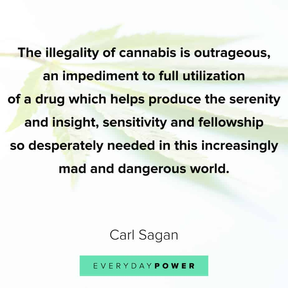 Weed Quotes about sensitivity