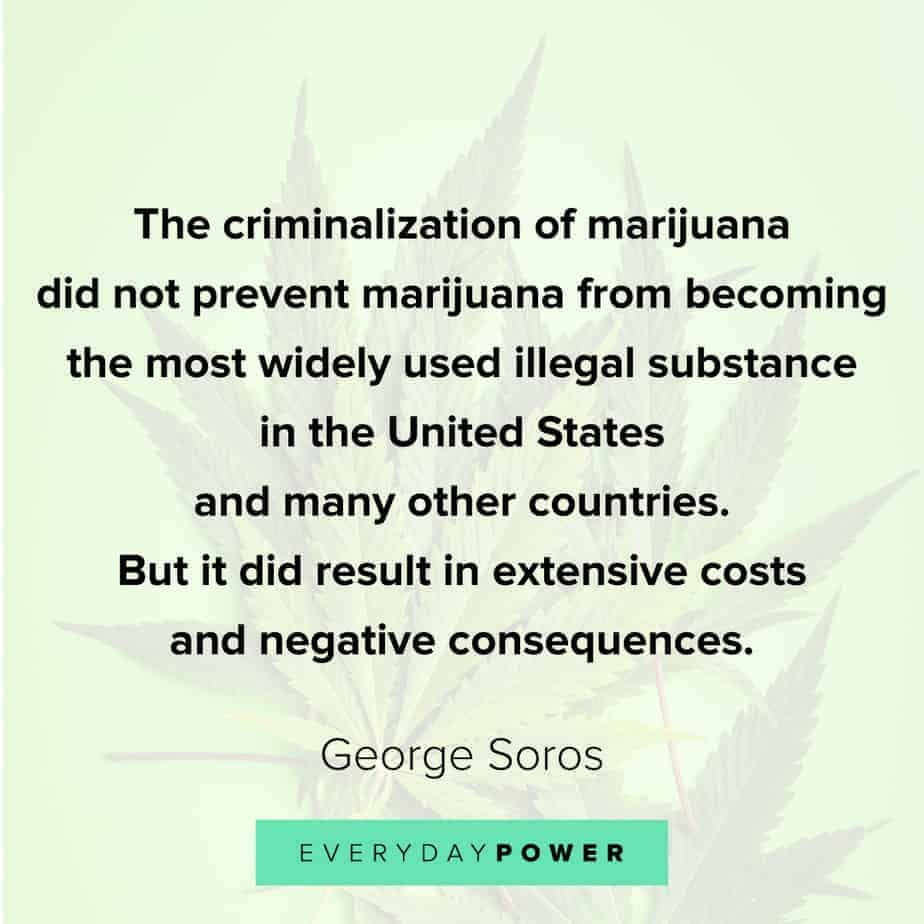 Weed Quotes about its criminalization