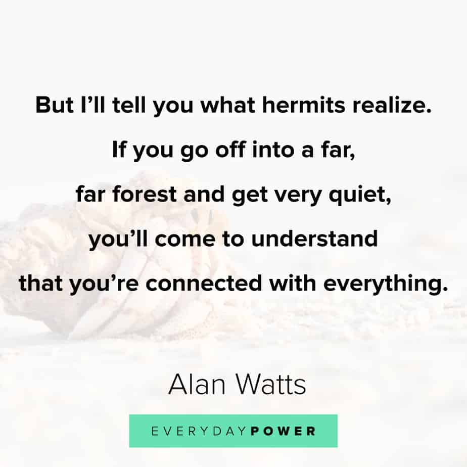 Alan Watts Quotes on distractions