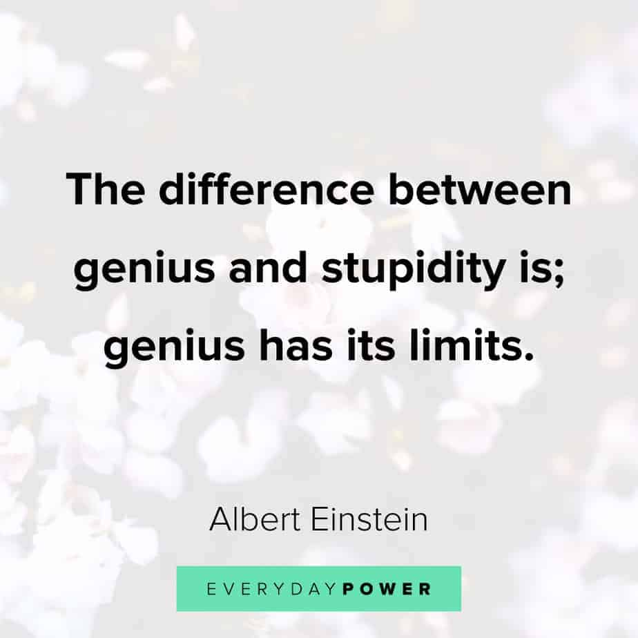 Funny inspirational quotes about stupidity
