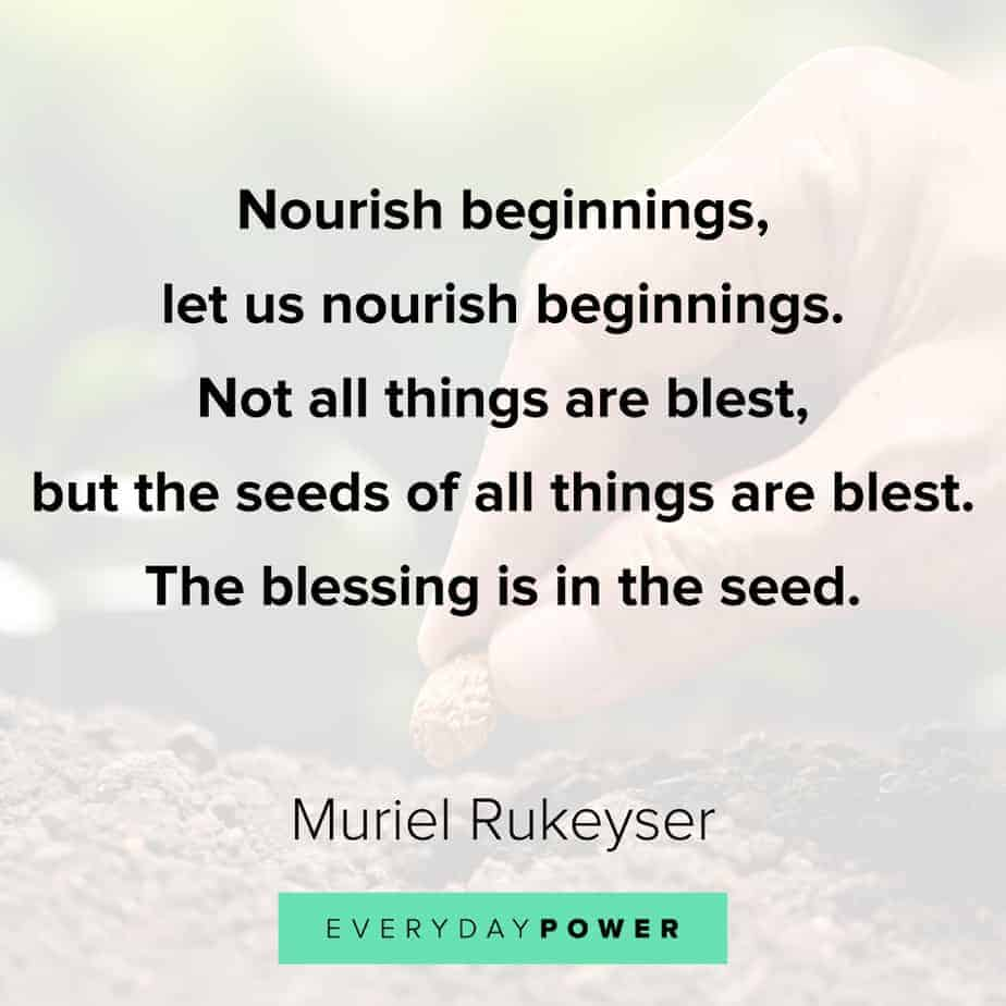 Quotes about new beginnings to nourish your soul
