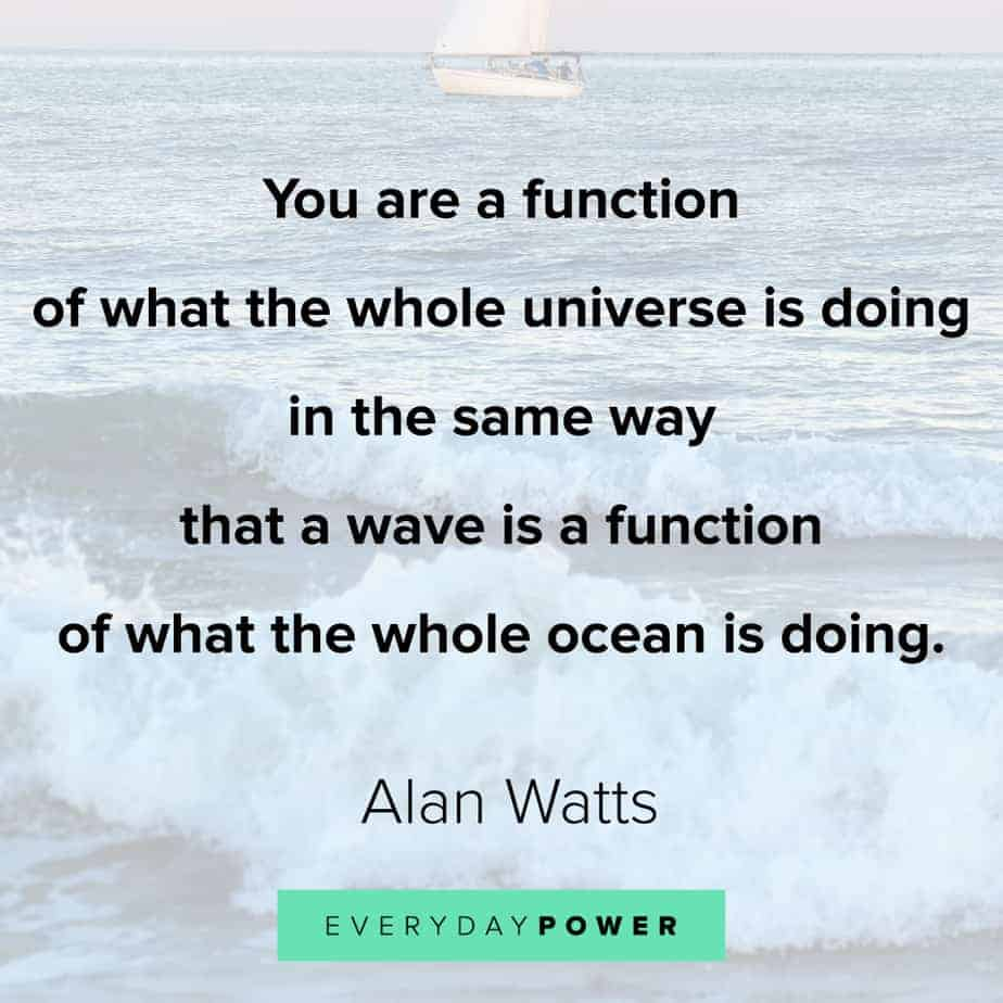 Alan Watts Quotes on the universe
