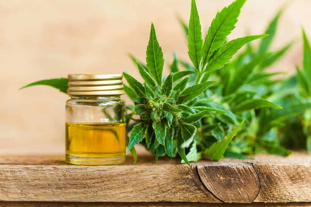 The Ultimate CBD Shopping guide