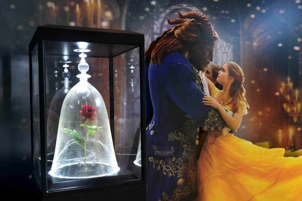 50 Beauty and the Beast Quotes that Bring Out the Child in You