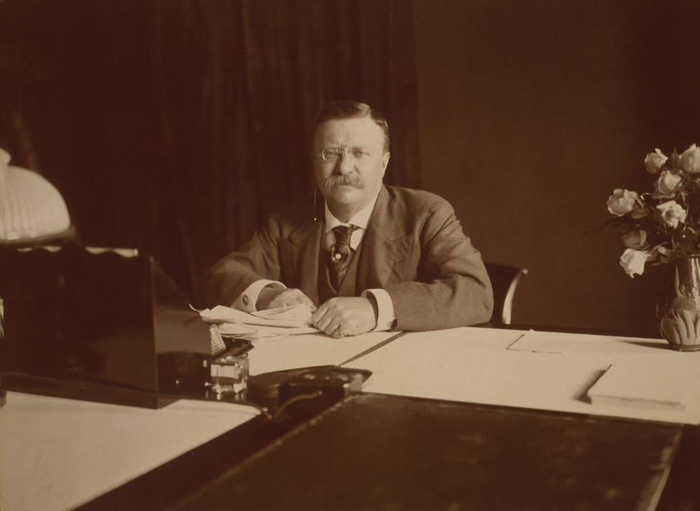 Theodore Roosevelt the American Statesman