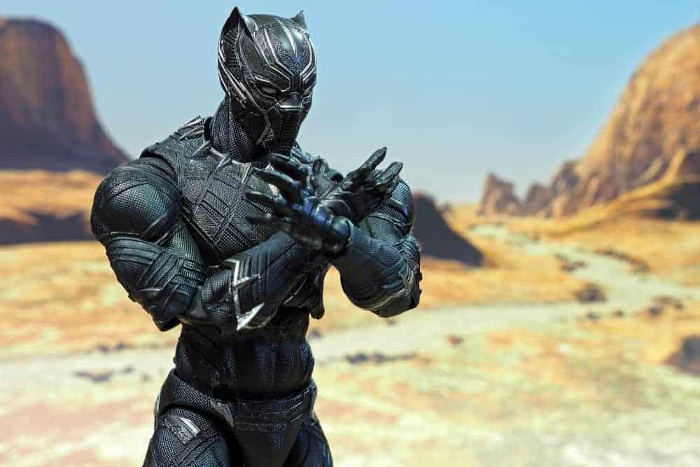 Black Panther The Superhero