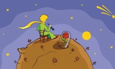 Little Prince Quotes About Life