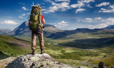 50 Adventurous Into the Wild Quotes From the Book