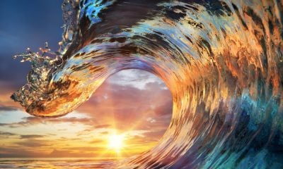 50 Waves Quotes For Surfers & Beach Lovers