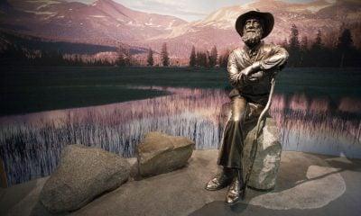 A Statue of John Muir