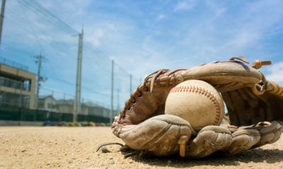 Baseball Gloves and Baseball ball