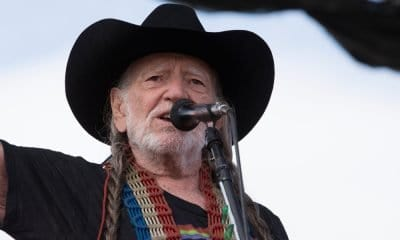 Willie Nelson the Musician