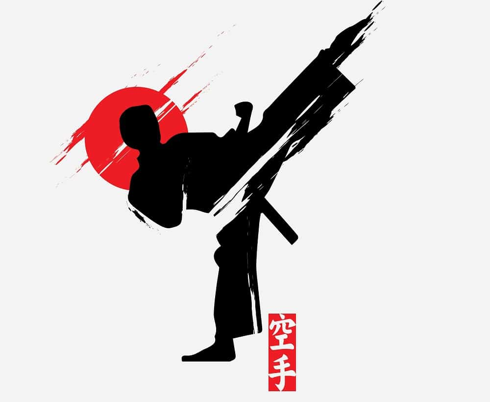 A Picture of a Martial Artist Doing a High Kick