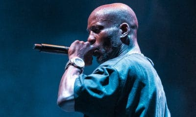 A Picture of DMX Singing