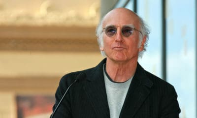 A Picture of Larry David