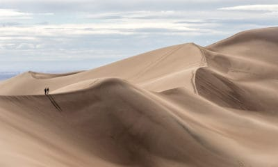 50 Dune Quotes From The Novel That Reshaped Science Fiction