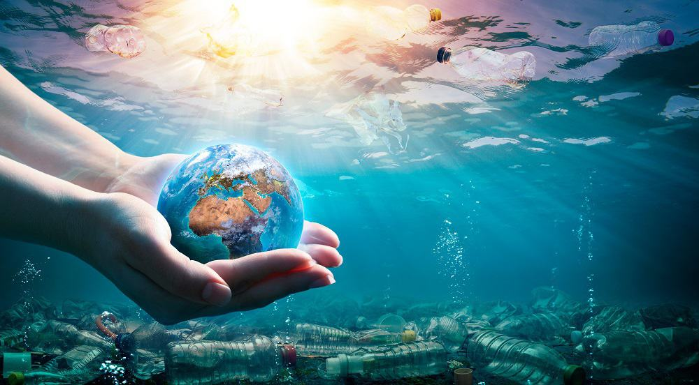 """50 Rachel Carson Quotes That Help You """"Sea"""" Environmental Protection in a New Light"""