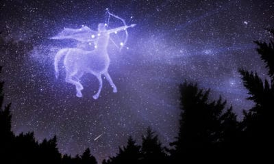 50 Sagittarius Quotes About The Adventurous Fire Sign