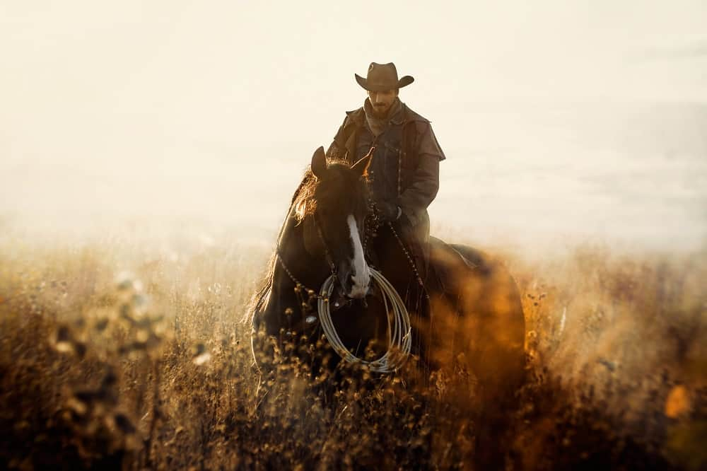 50 Cowboy Quotes for Your Country Side