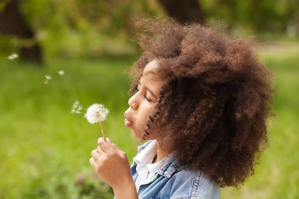 50 Dandelion Quotes About Nature's Pretty Little Weed