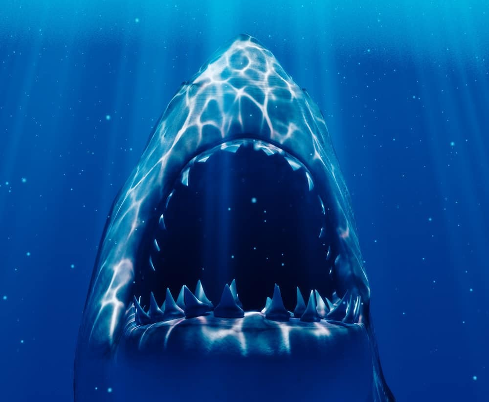 50 Jaws Quotes from the legendary thriller
